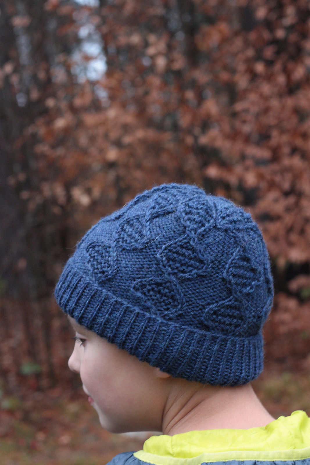 Children's and teen hat Nye. Knitting pattern (cables).