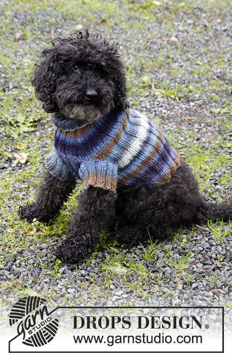 Pet clothing Paws & Stripes. Free easy knitting pattern.